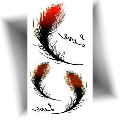 Mini tatouage temporaire plume
