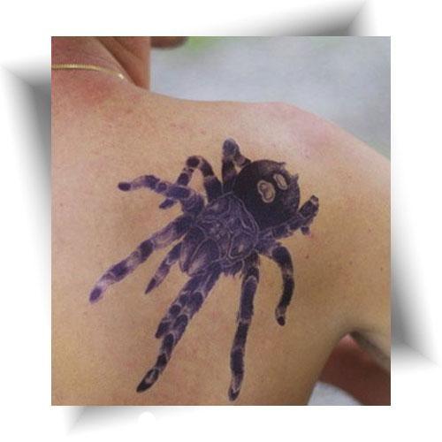Tatouage-éphémère-araignée-mygale